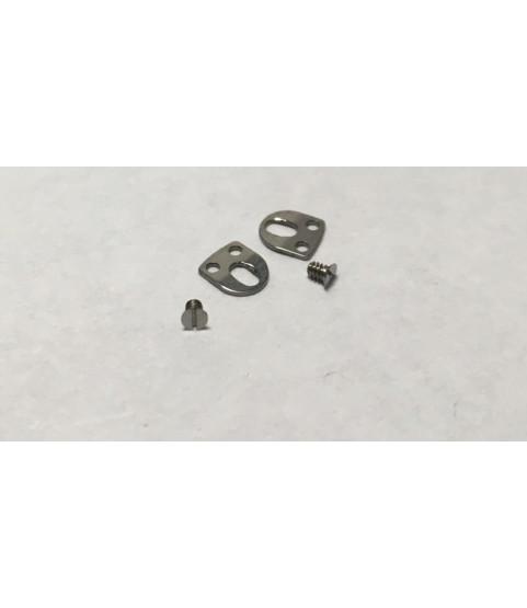 ETA 2391 casing clamps parts 166